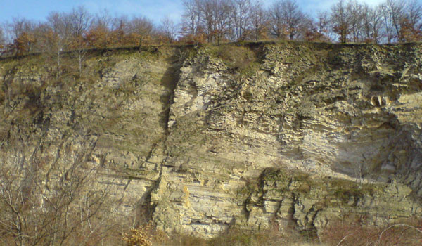 Engineering-geological conditions of the Transcarpathian region