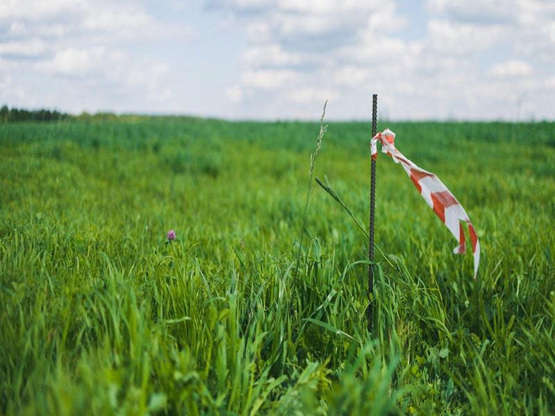 Картинки по запросу Все что необходимо знать о выносе границ земельного участка в натуру по Киевской области